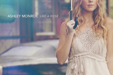 John Danks wife Ashley Monroe