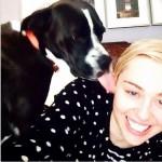 Jimmy Butler's girlfriend Miley Cyrus - Instagram