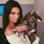 D'Angelo Russell's girlfriend Kendall Jenner - Instagram