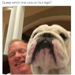 This Dog is not Bob Huggins wife - Twitter